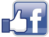 Facebook Like Logo